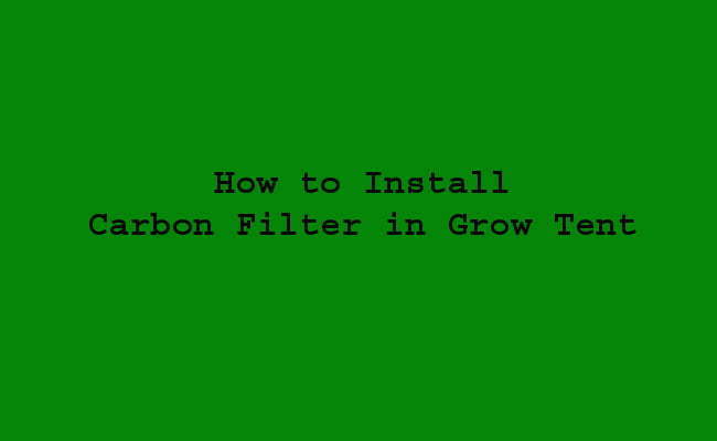 How to Install Carbon Filter in Grow Tent