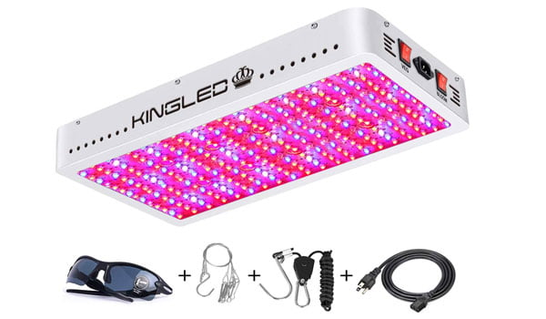 highest yielding led grow light