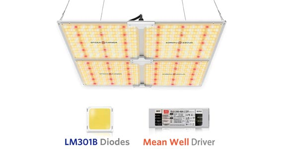 Spider LED Grow Light for 4 by 4 tent