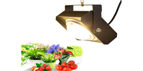 CANAGROW High Intensity COB LED Grow Light
