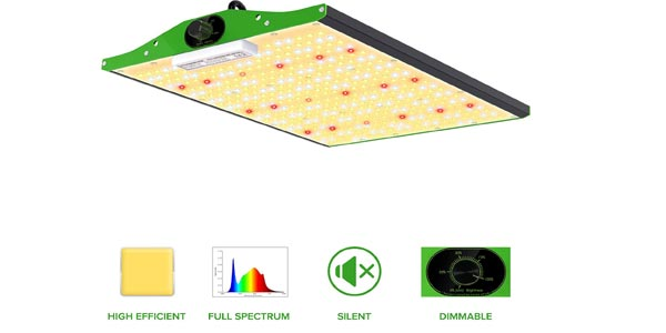 best professional LED grow lights